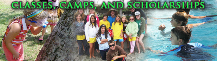 Classes Camps Scholarships Banner