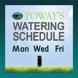 New watering schedule